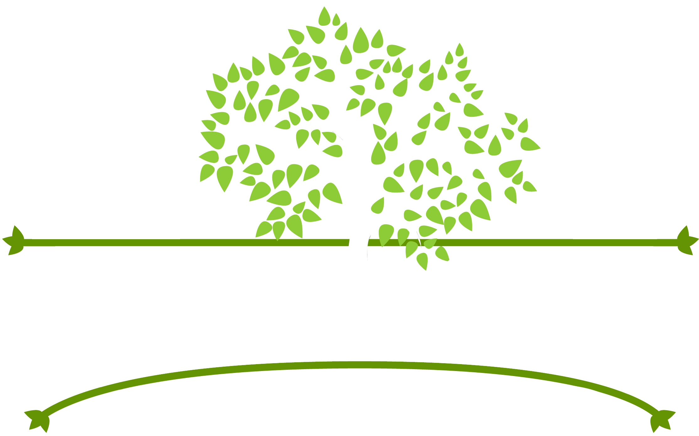 Lawinds Tree Care